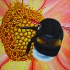 Nectar is on show at Lauderdale House, Highgate