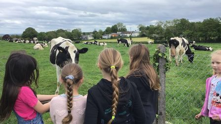 Primary school students were encouraged to get out in nature over the half term