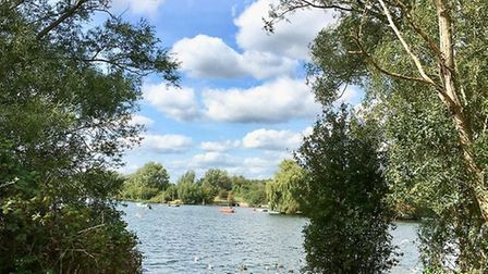 Fairlop Waters to receive tree donation