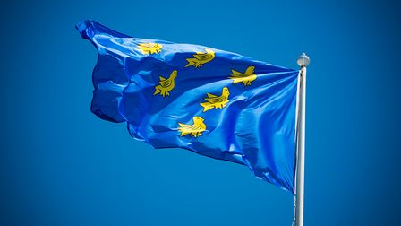 The Sussex Flag features six martlets on a blue background