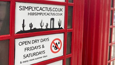 This phone box in Tombland, Norwich, is to be used as a tiny shop selling cacti.
