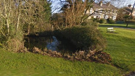 Pitties Pond in Reed is one of the ponds that volunteers could help maintain