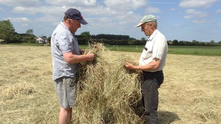 Rob and Alastair checking the hay.