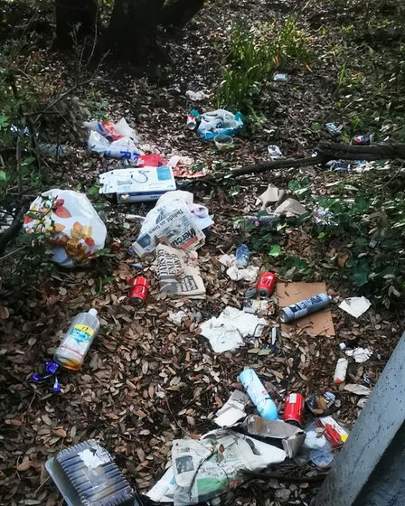 Weston cleaning group call for community effort.