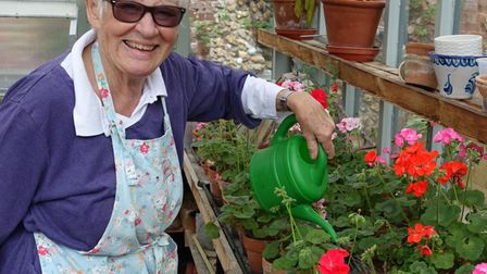 Pam Bowling watering her pelargoniums in the greenhouse.