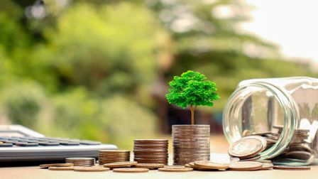 Plant trees on coins and calculators, financial accounting concepts and save money.