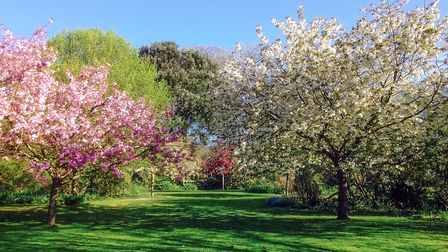 Worthing's Highdown Gardens has been restored so visitors can enjoy it well into the future