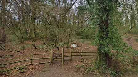 An entrance to Weston Big Wood in Valley Road.