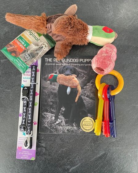 gundog diarySome of the items you'll need ready for pup's arrival