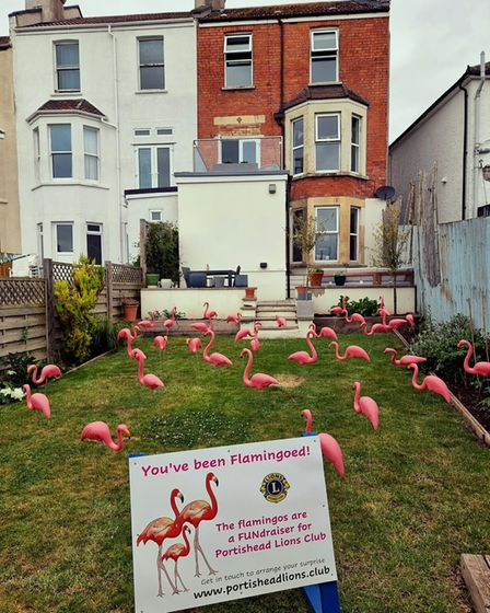 Residents have been surprised to find a flock of 30 plastic birdsin their gardens by family and friends.