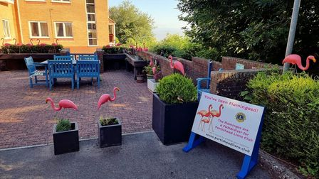 Residents of Norewood Lodge Care Home in Portishead woke up to a flock of 30 plastic birds on the grounds on June 16.