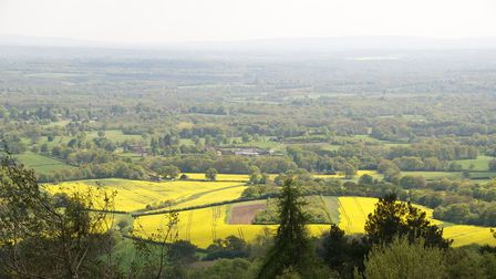 A view from Leith Hill in Surrey