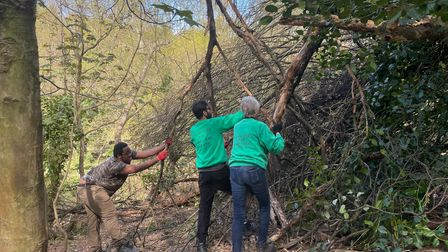 Trainee ranger Edozie 'Eddie' Oduah among the Heath Hands volunteers working to clear fallen branches