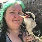 Kat Tate has been taking her kookaburra Siren along on her daily lockdown walk. Picture: Supplied by