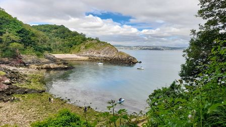 Fishcombe Cove with Churston Cove beyond that