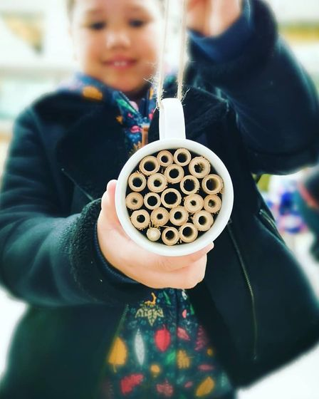 Bee Saviour Behaviour and the Earlham Institute have launched a national bee hotel survey.
