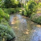 The revived river Ivel