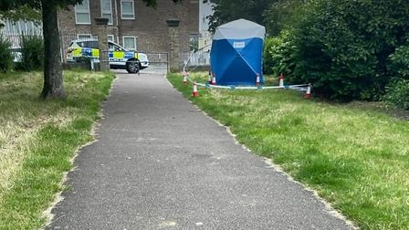 Police are investigating an attempted rape in Great Yarmouth