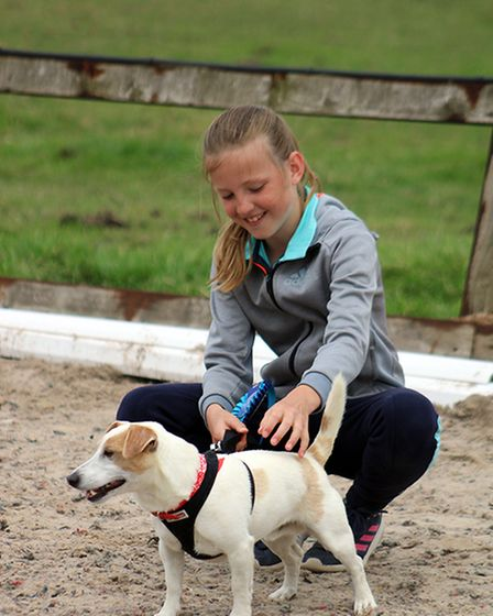 Pet ownersshowed off their pooches with the waggiest tail, best trick and the finest moves on Saturday.