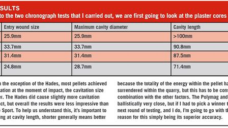 Ballistic results from the pellet test