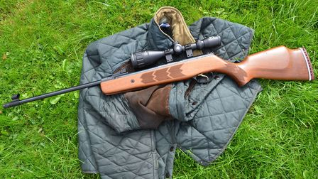 Webley's Stingray is very similar to my old Vulcan, but the trigger is a huge improvement