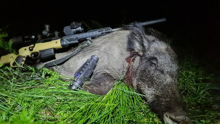 The Pulsar pairing of Digex scope and Helion XP50 is clearly a lethal combination on the boar