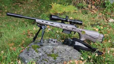 At 204 yards the SK Long Range did its job superbly well and is 'the' long range 22 rimfire round fo