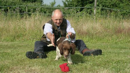 You can use a lead during early recall and retrieve work with your puppy, eventually letting it trai