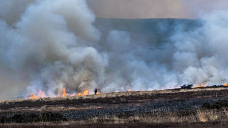 Although the government remains committed to phasing out heather burning, Defra has reconised that i