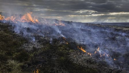 Unmanaged moorland leaves it at risk to wildfires, a concern which has only grown with climate chang
