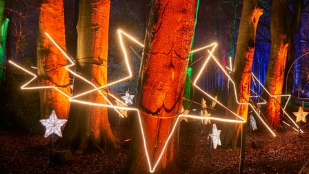 Tree Stars by Culture Creative onMy Christmas Trails 2020.