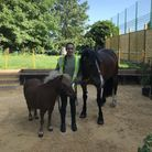 Equine therapist Lotte Carlebach with her ponies