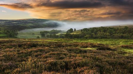 Dawn mist over the North York Moors national park Credit: Danielrao/Getty