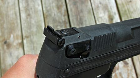 The Alecto's rear sights are adjustable