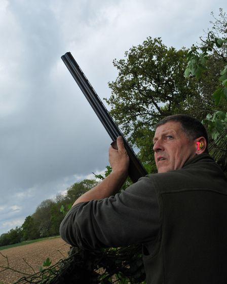 shooting from the hide