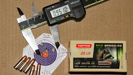 The Norma Eco-Speed from the semi auto Ruger 10/22 was less accurate as expected