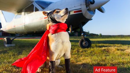 Find aviation insurance policies and finance by people who really understand the sector Credit: Aksa
