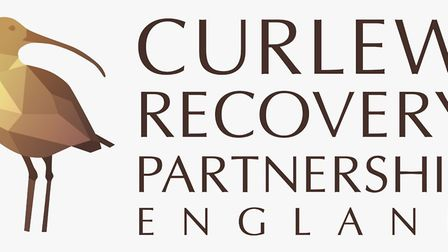 The Curlew Recovery Partnership hopes to change the future for one of Britains most threatened bird