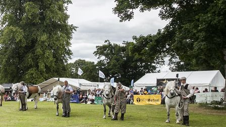 Highland pony parade and competition at the GWCT Scottish Game Fair a major and popular feature of