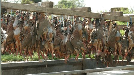 From the 1st July 2021, UK game dealers will no longer accept birds or deer that have been shot with