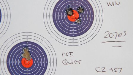 Some of the reduce velocity loads shot very well at 20 yards, check out those CCI Quiet rounds!