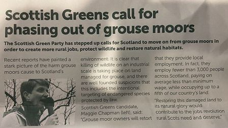 The utterly misleading flyer circulated by the Scottish Greens