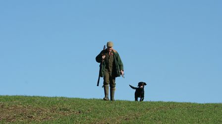 A dog that needs to be kept on a lead in the shooting field is at best, inconvenient, and at worst,