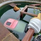 A littler bin, table and plastic ice cream inside the ornamental pond.