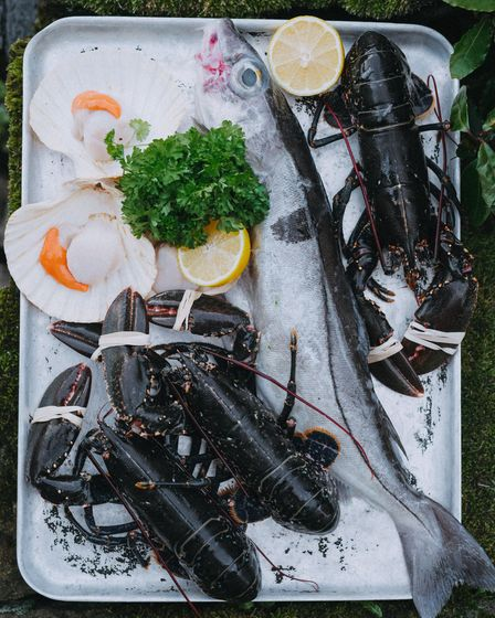 Scallops and lobster - Fishmongers on the Yorkshire Coast will sell or prepare your seafood