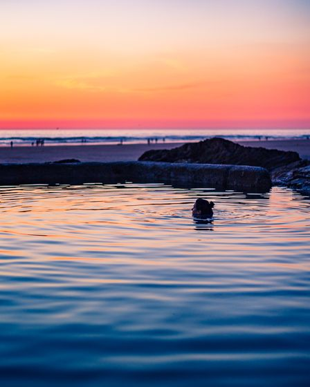lone swimmer in the sea at sunset