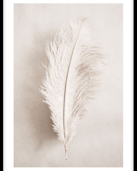 As a Feather poster fromMolly-Mae Hague's collection with Desenio