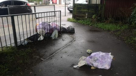 This rubbish was dumped in Fleetville Park, St Albans.