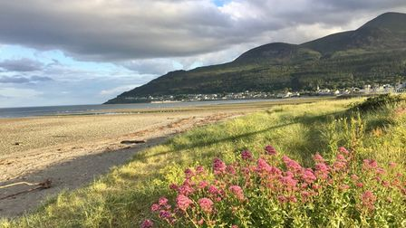 The Mourne Mountains are picturesque when the mist is about to fall.