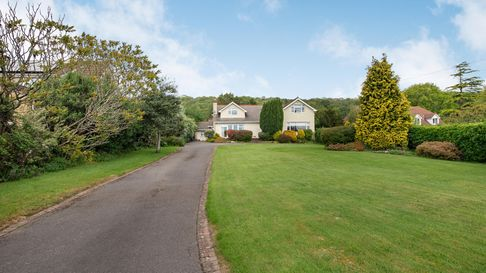 cream-rendered house in the distance with lawn and driveway leading to it with shrubs and trees surrounding it